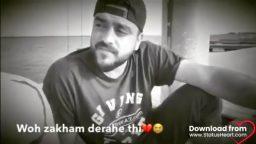 Naye Muhabbat Mein Dialogue Video status download