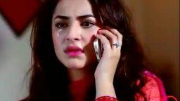 sad urdu Video status downlo