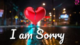 I Am Sorry Whatsapp Status Archives Statusheartcom