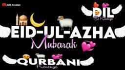 QURBANI Kiya KARTE HAIN STATUS Bakra Eid Pe Qurbani Status Moula Karle Kabool Status Download