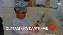 Qurbani WhatsApp status 2021 Hafiz Tahir qadri new Status Download